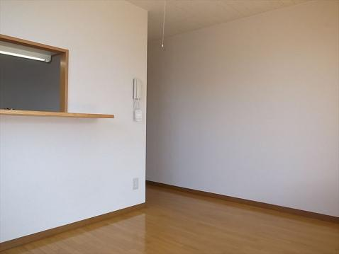 アールフリー真栄2-1 303号室賃貸物件_室内写真03